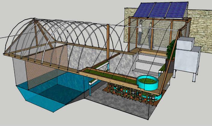 Swimming-Pool-Farms