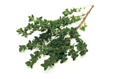 18-Spices-Scientifically-Proven-To-Prevent-and-Treat-Cancer-17-Thyme