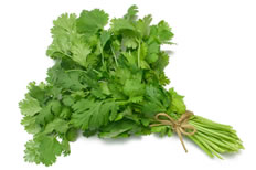 18-Spices-Scientifically-Proven-To-Prevent-and-Treat-Cancer-8-Coriander