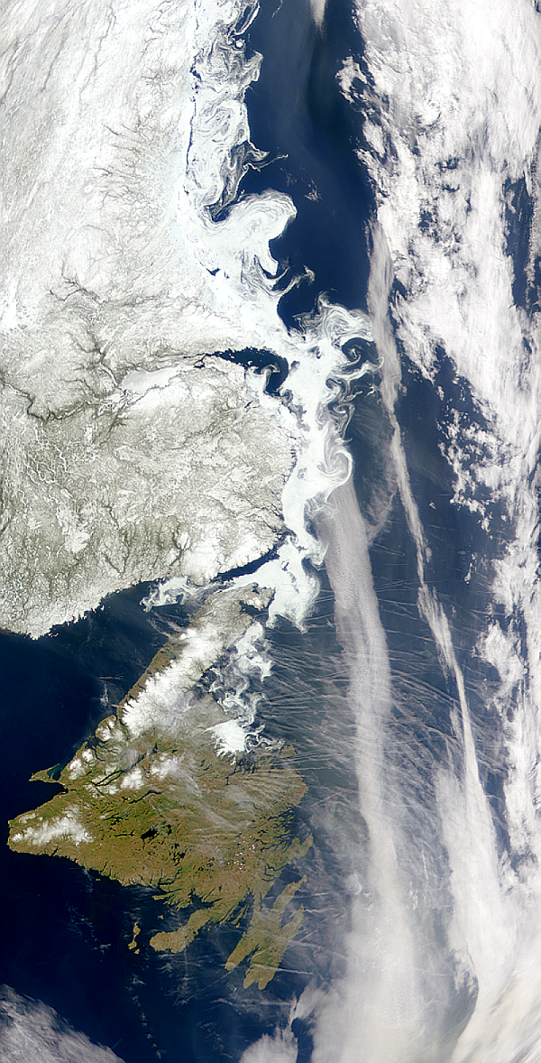 This SeaWiFS image shows aircraft contrails over the North Atlantic near Labrador, Newfoundland and lingering sea ice to the north.