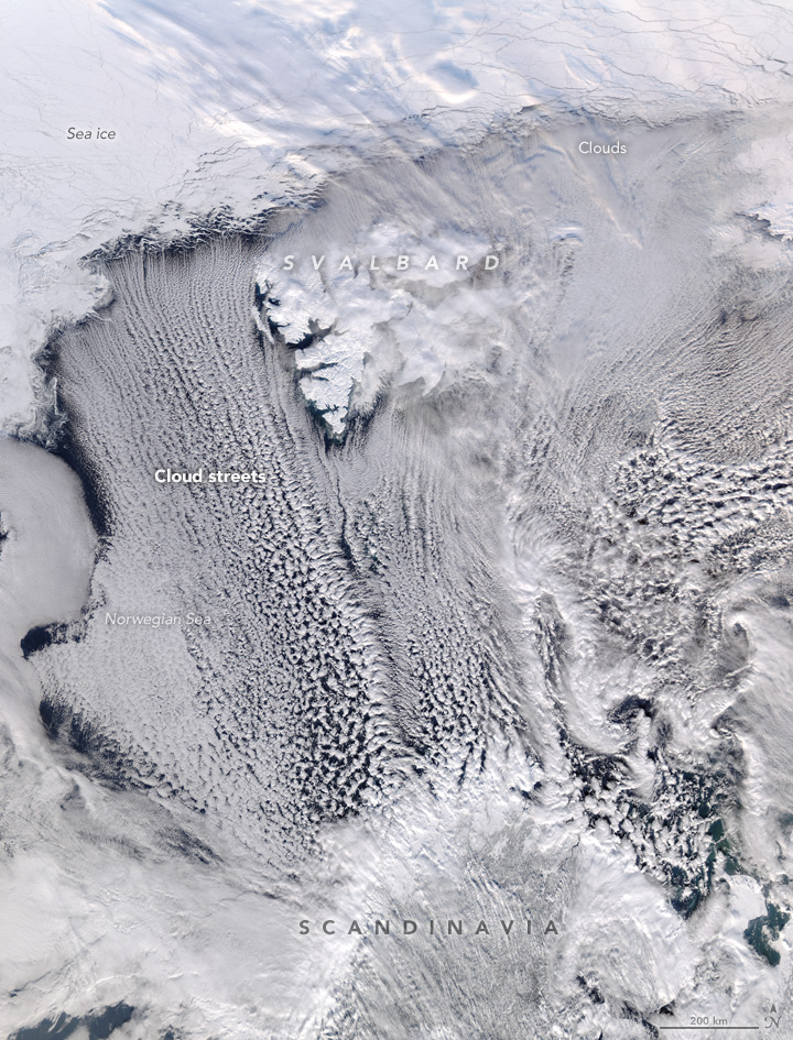 On March 17, 2016, the Moderate Resolution Imaging Spectroradiometer (MODIS) on NASA's Aqua satellite acquired this natural-color image of cloud streets over the Norwegian Sea.